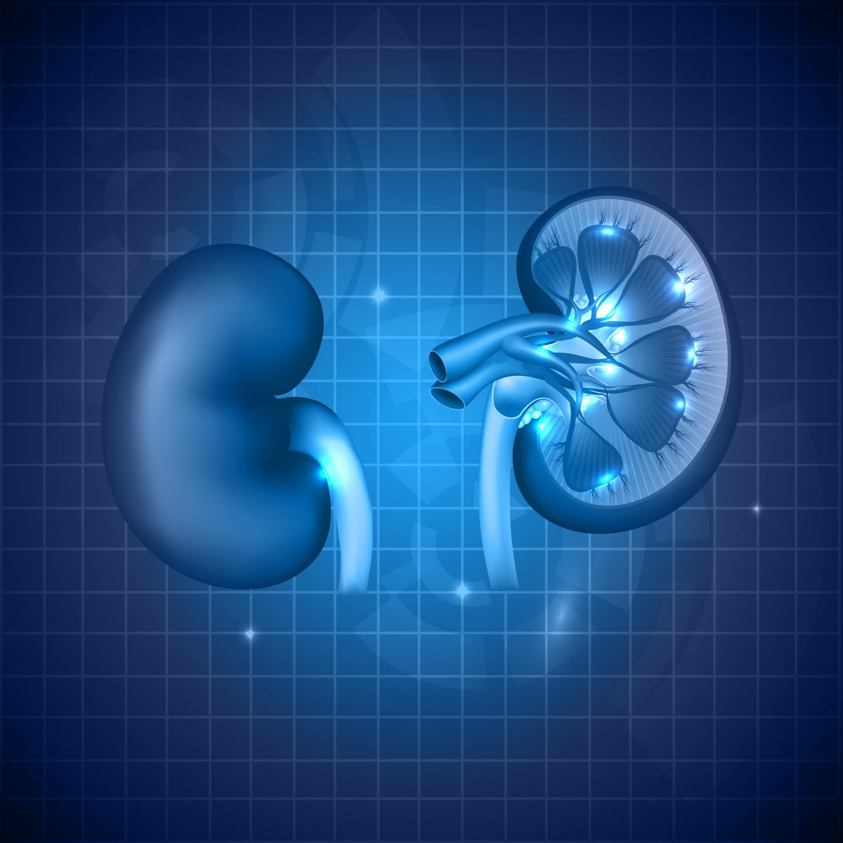 Researchers Review Clinical Trial Design for Lupus Nephritis Therapies