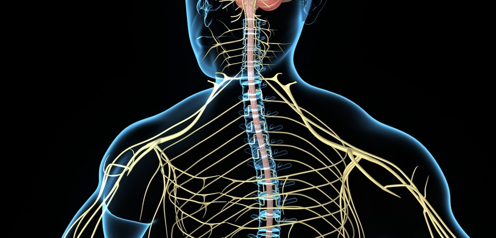 Lupus Review Cites Prevalence of Central Nervous System Involvement