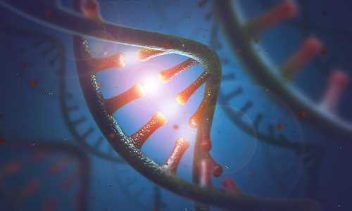 Circulating RNA Levels May be Potential Lupus Biomarkers