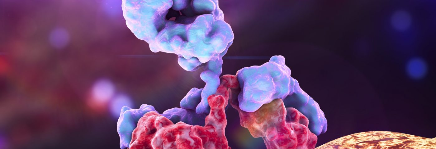 Selexis to Equip ImmuNext with Cells Needed for Antibody That May Treat Lupus